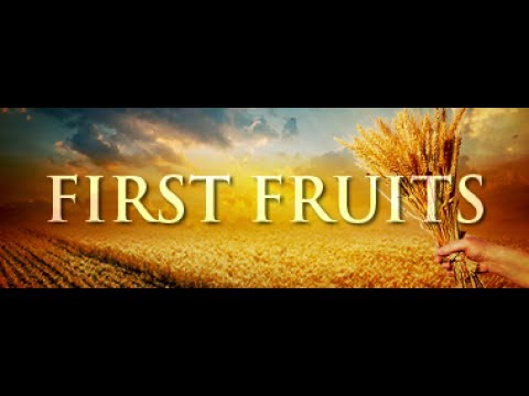 The First Fruit Series
