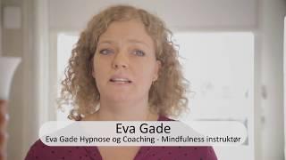 Gambar cover www.thauer.dk - Mindfulness instruktør Eva Gade m.fl. deltager på Masterclass i stress-management.