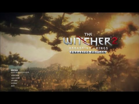 The Witcher 2: Assassins Of Kings On Intel GMA 4500MHD | Intel Core 2 Duo | VRAM 128mb | Low Setting