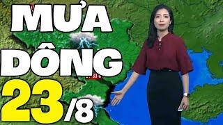 Dự báo thời tiết hôm nay và ngày mai 23/8 | Dự báo thời tiết đêm nay mới nhất