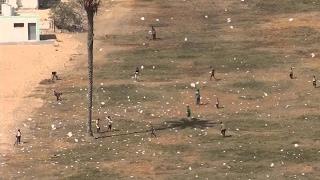 أخبار عربية: طائرات عراقية تلقي منشورات غربي الموصل
