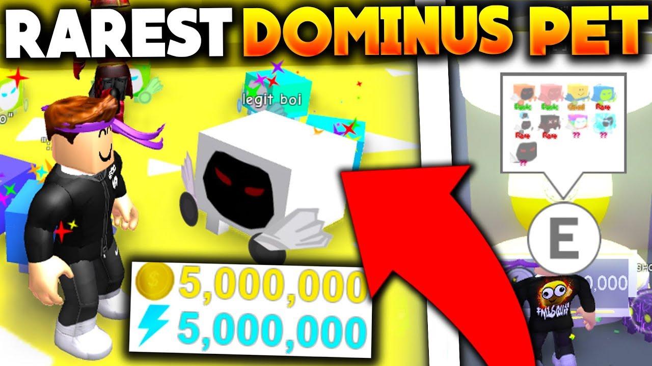 Dominus Pet Simulator Roblox Videos Dominus Pet Simulator I Got The Rarest Tier 17 Dominus Pet And It Broke Pet Simulator Roblox Youtube