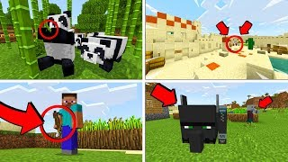 Minecraft PE 1.8 Update Gameplay & Review! - New MCPE 1.8 Update Features (Pocket Edition)