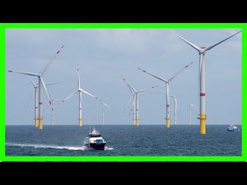 363 tage im jahr: offshore-windparks liefern (fast) immer strom