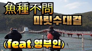 어종불문 마릿수 대결 in 통영등대낚시공원(feat.영…