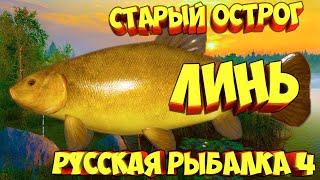 русская рыбалка 4 Линь озеро Старый Острог рр4 фарм Алексей Майоров russian fishing 4