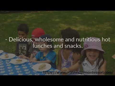 Northridge Montessori School Summer Camp | Mississauga | 905-281-0840