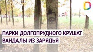Парки Долгопрудного крушат вандалы из Зарядья | Телеканал Долгопрудный