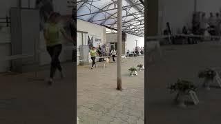 15 сентября 2019 Выставка собак в г. Астрахань ТИМЕРТАШ ЦЕЗАРИНА дочь Вивы и Илюш
