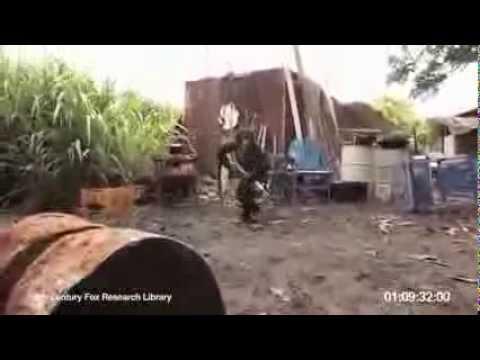 Macaco atirando com fuzil