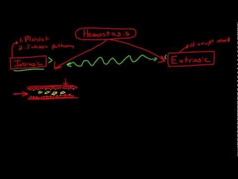 Physiology of Hemostasis & the Coagulation Cascade
