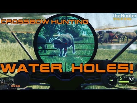 CrossBow Hunting from a GROUND BLIND!! (As Real as it Gets) Call of the WILD THEHUNTER 2018