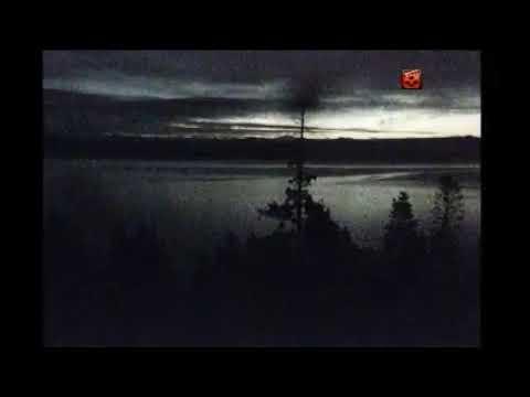 Hornby Island Eagles Live Stream