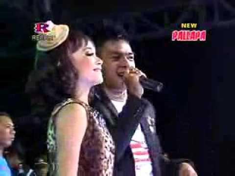 Birunya Cinta, Tasya ft Gerry,  NEW PALLAPA,  Live Sawo, cangkring, Wonoayu, Sidoarjo, 4 Oktber 2015