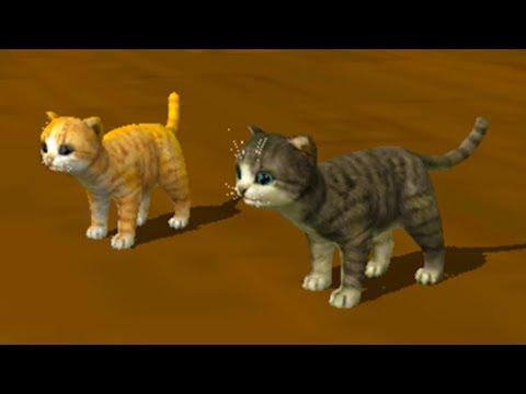 Видео Симулятор кошки 3d играть онлайн