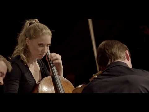 Pavel Haas: String