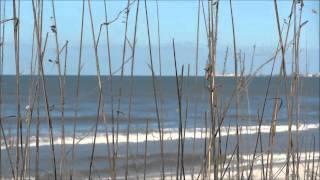 (0.06 MB) Darren Hayes - Taken By The Sea Mp3