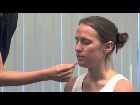 Anatomy Series - Trigeminal Nerve.