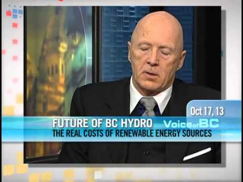 Richard Stout - The Real Costs Of Renewable Energy Sources