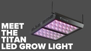 Meet the T500 (formerly Titan) LED Grow Light