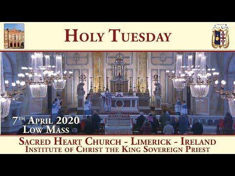 7th April 2020 - Holy Tuesday - Sacred Heart Church - Limerick - Traditional Latin Mass