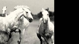 Jeff Buckley - Mojo Pin (w/lyrics)
