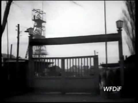 Chorzów w Polskiej Kronice Filmowej - PKF niewyemitowany materiał 1957r