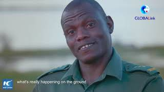 GLOBALink | Biofriendly infrastructure building: Anti-poaching efforts for elephants