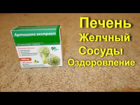 Артишок для лечения печени и желчного. Лечебные свойства  артишока. Холестерин  сосуды и здоровье