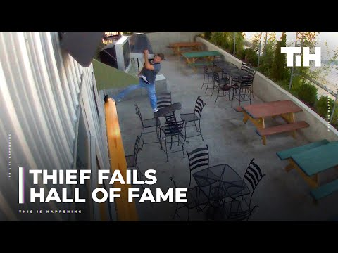 Greatest Viral Thief Fails Hall of Fame