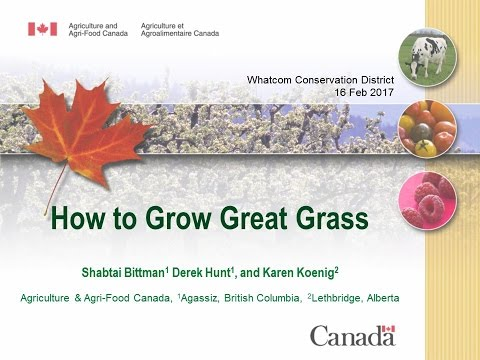 How to Grow Great Grass - For Dairy Farmers