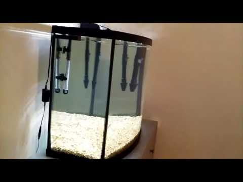 Marineland 38 gallon bowfront tank new tank update for 38 gallon fish tank