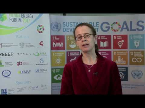 World Bank Group's Vivien Foster at the VEF2017