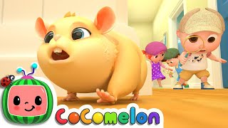 Lost Hamster | CoComelon Nursery Rhymes & Kids Songs