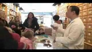 Lin Sister Herbs Shop (4 Bowery, Chinatown, New York)