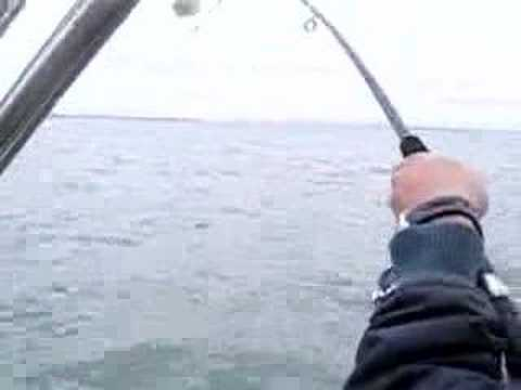 Crazy fishing video youtube for Crazy fishing videos