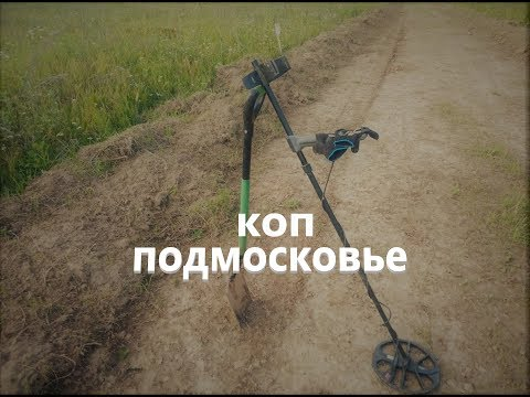 Поиск с металлоискателем в Московской области 2019