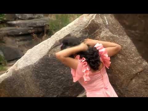 Chehera Tora Chandini odia song