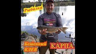 рыбалка дятлово сезон