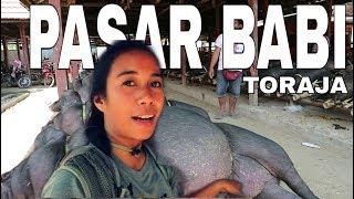 Download lagu Pasar Babi Terbesar di Toraja Paling Mahal Babi Bertaring 14 Juta Per Ekor MP3