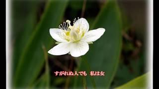 愛 恋 平島賢治 /  cover   botan