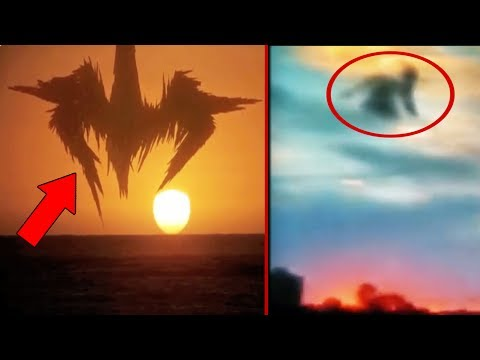 5 Unidentified Flying Creatures Caught On Camera!