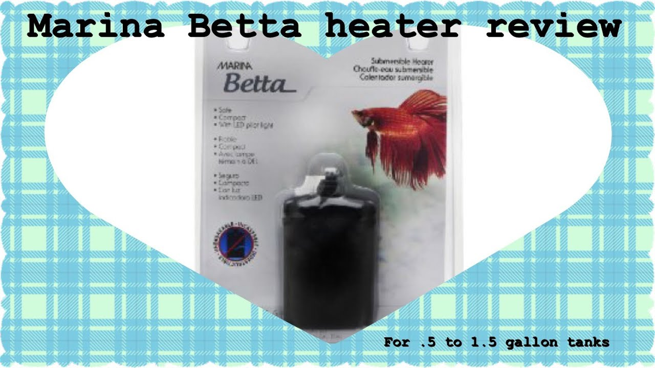 Marina betta heater review 5 gal 1 5 gal youtube for Betta fish water heater