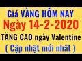 Giá VÀNG Hôm Nay ngày 14/2/2020 TĂNG CAO, Vàng DOJI, SJC, PNJ, 24K 9999, giá ngoại tệ