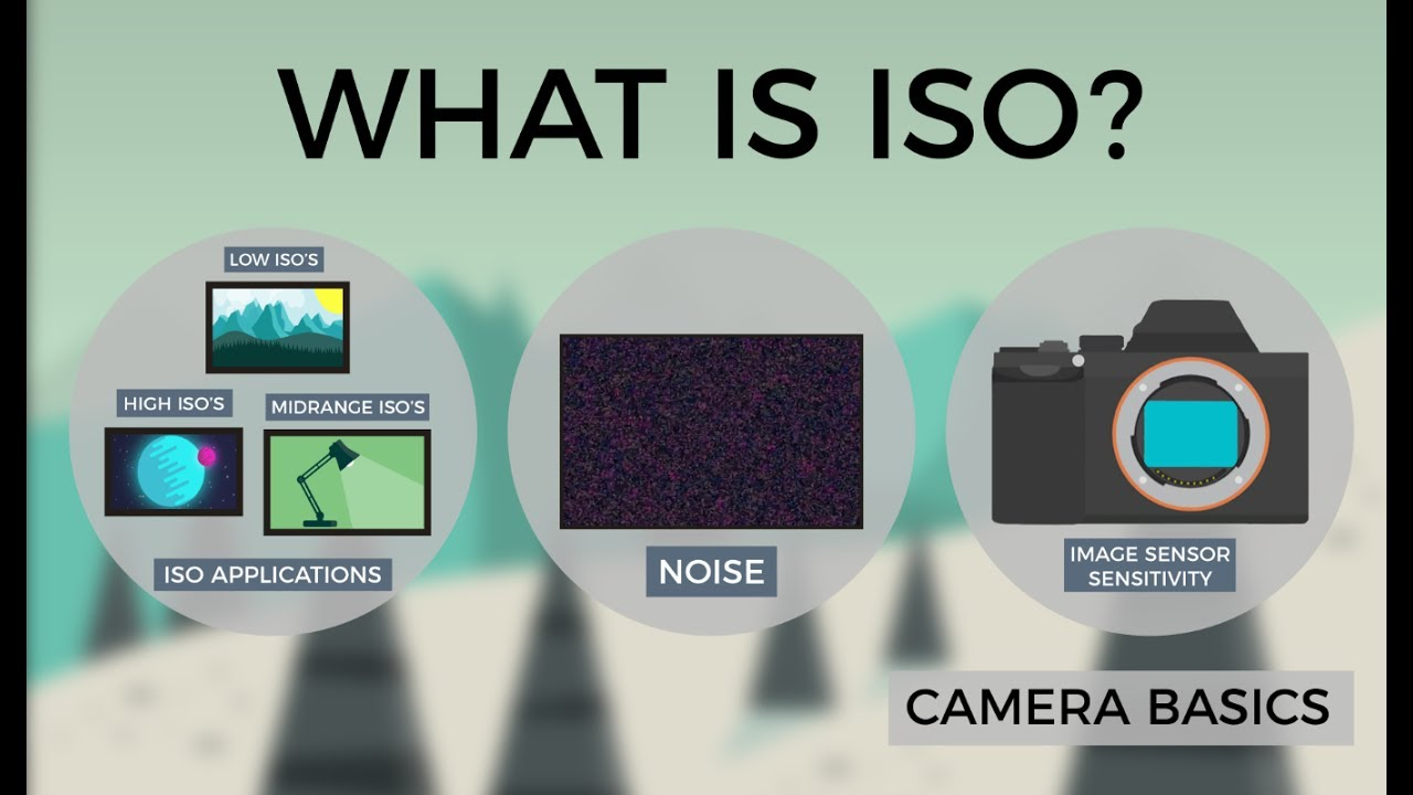 Iso Meaning Photography >> Camera Basics Iso Youtube