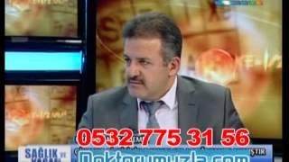 panax ginseng bitkisinin kolesterol üzerine etkisi, dr musa demir, 0532 775 31 56