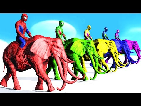 Thumbnail: Colors Spiderman Riding Elephant Colours Cartoon For Kids - Learn Colors Fun Animals For Children