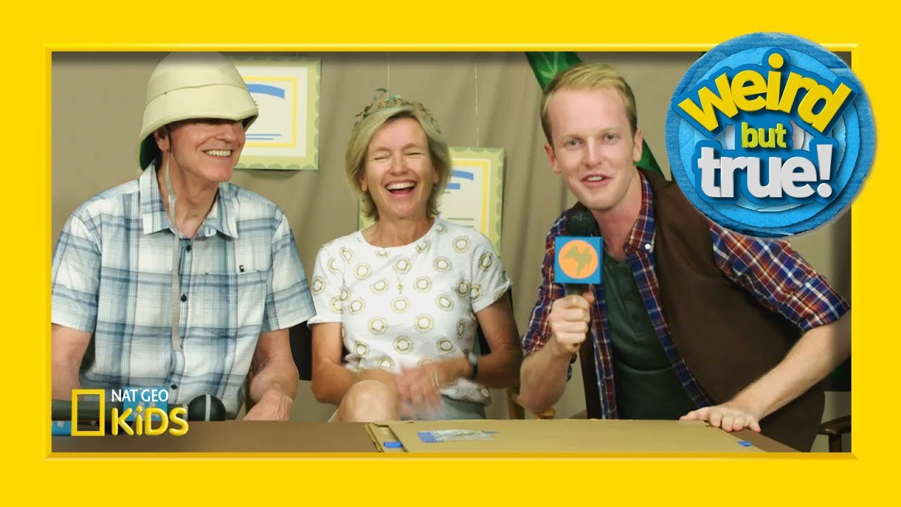 """Falcon News"" Hot Seat with Mom and Dad 
