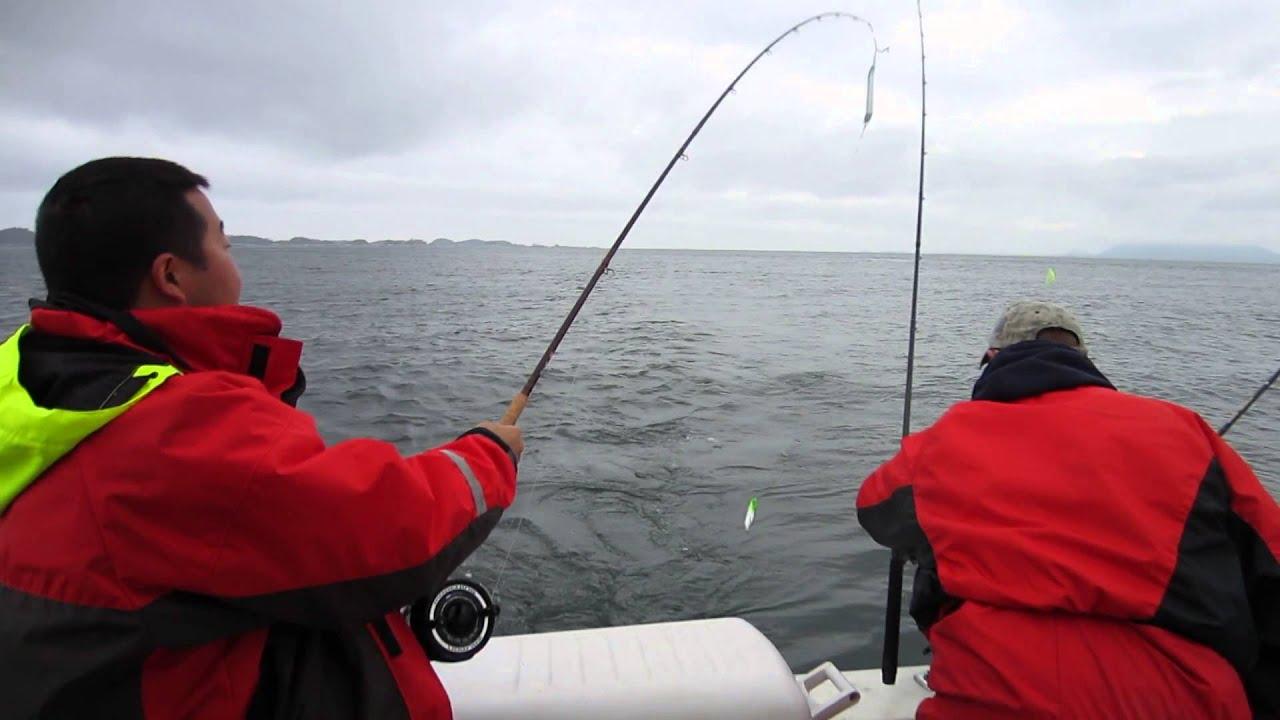 Fishing fails halibut bait video gone wrong fishinbc com for Youtube fishing video