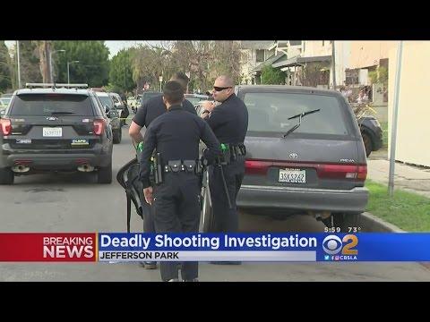Mother Shot Dead In Jefferson Park, Man Arrested